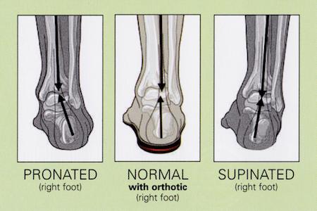 orthoimage-sm